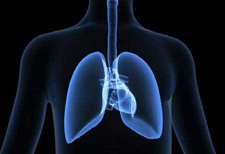 What is the Latest Technology to Detect Lung Cancer at an Initial Stage?