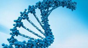 What is Molecular Diagnostics?