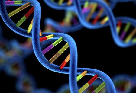 Blockchain and the Future of Genomics